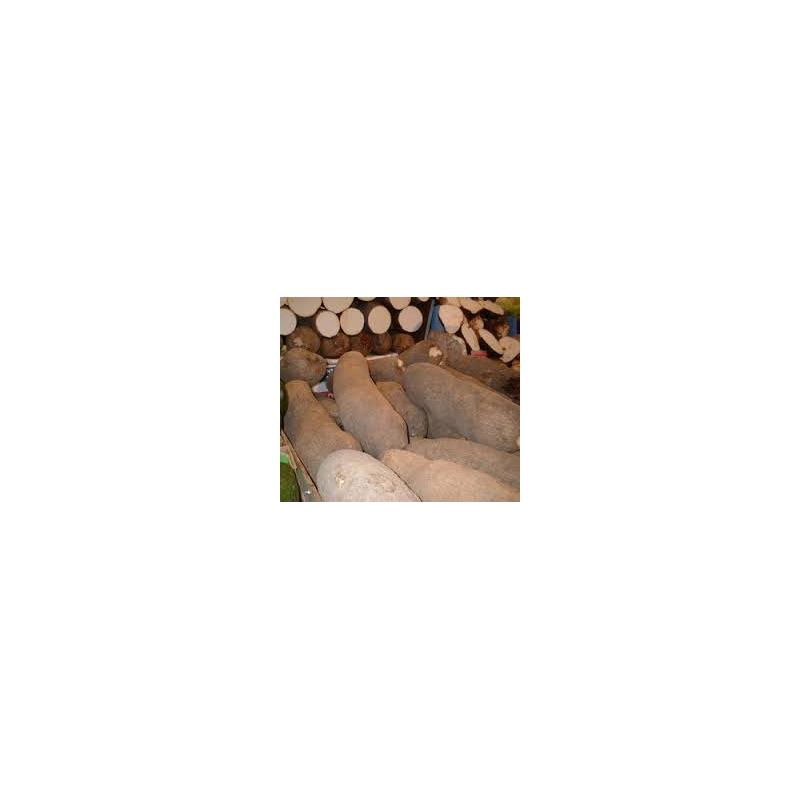 IGNAME SURGELE 1000GR TOGO
