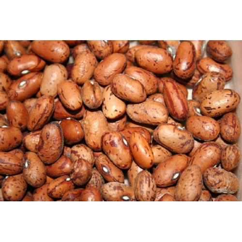 HARICOT VRAC 25KG COCO ROSE ARGENTINE