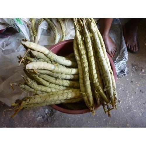 BOBOLO PAR 3 CAMEROUN