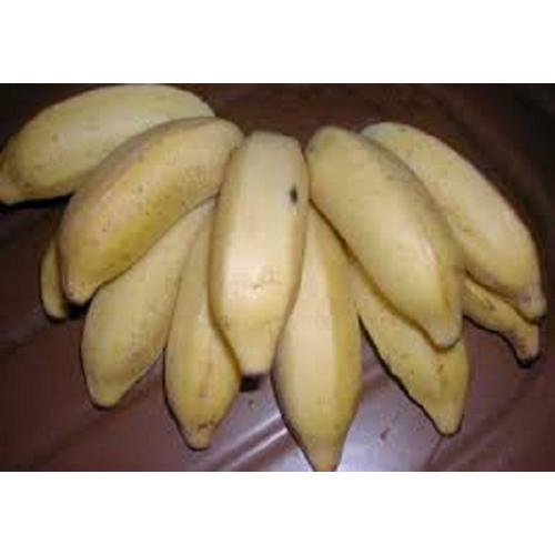 BANANE FIFI BURUNDI